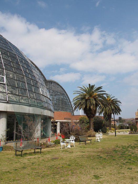 夢の島公園・熱帯植物園