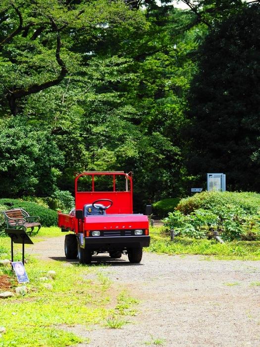 神代植物公園 赤いトラック
