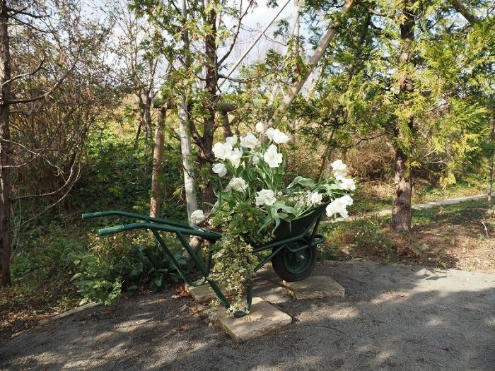 花菜ガーデン フォトスポット