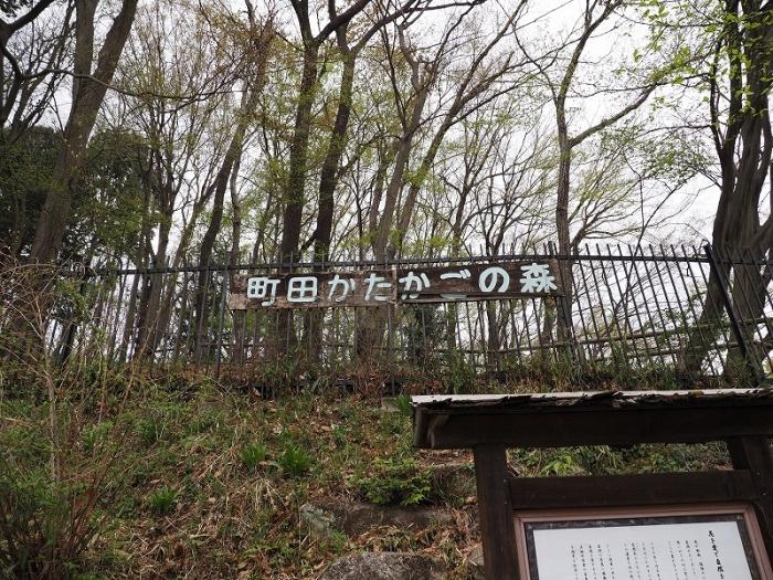 町田かたかごの森 入り口